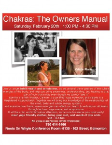 chakras the owners manual